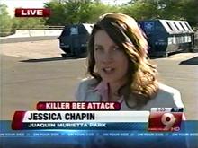 Fatal Bee Attacks